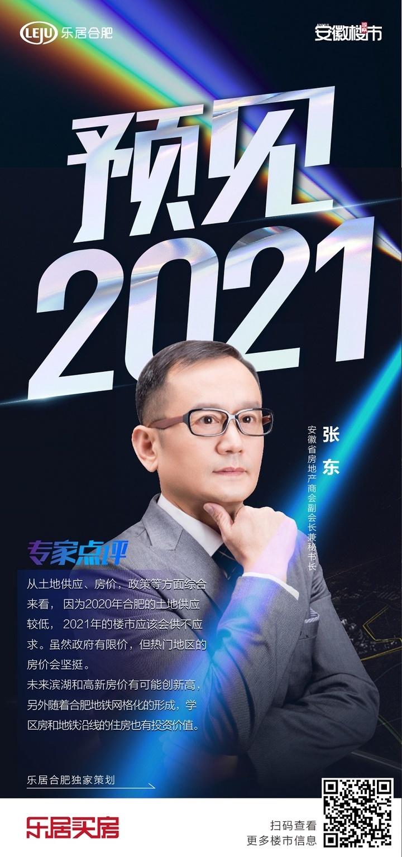 预见2021|省地产商会张东: 2021年的楼市应该会供不应求