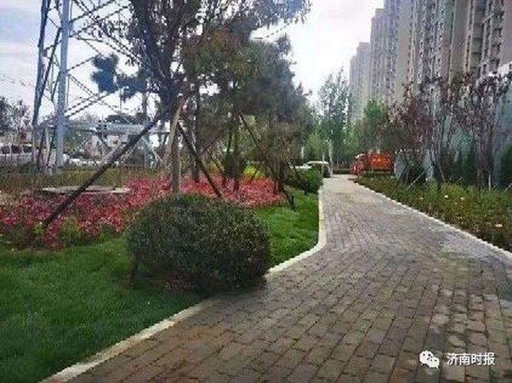 济南市区又有5个公园建成开放,具体位置在这儿