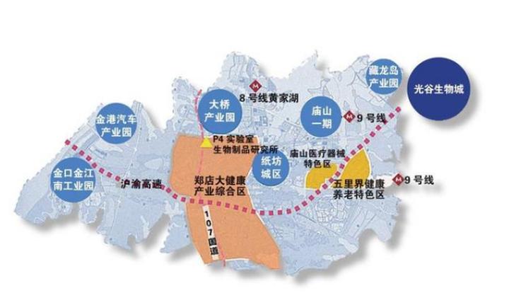 金银潭永旺补挂牌,光谷南大健康产业园商服落地