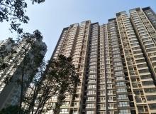 港地建会:放宽住宅楼控政策能促进香港经济