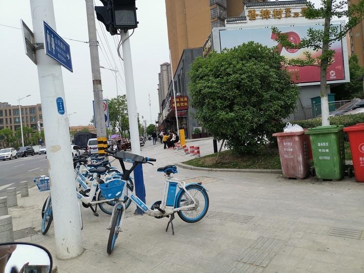 9月30日,银川市民可免费骑行青桔单车