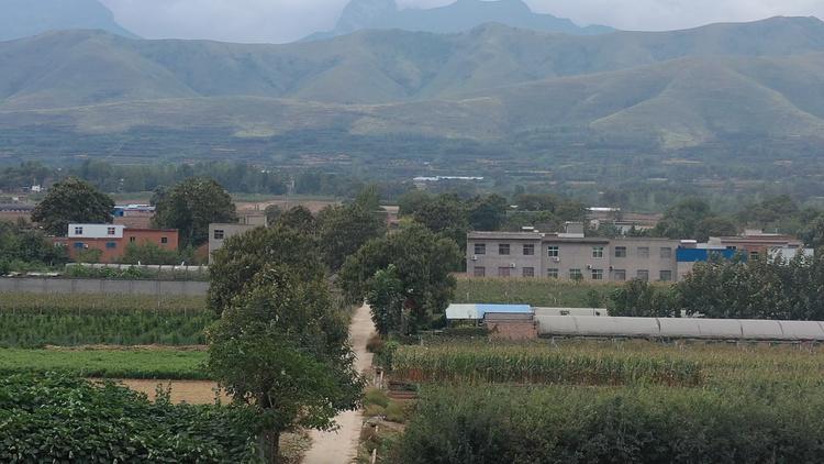 河南规范农村宅基地和住房建设管理工作