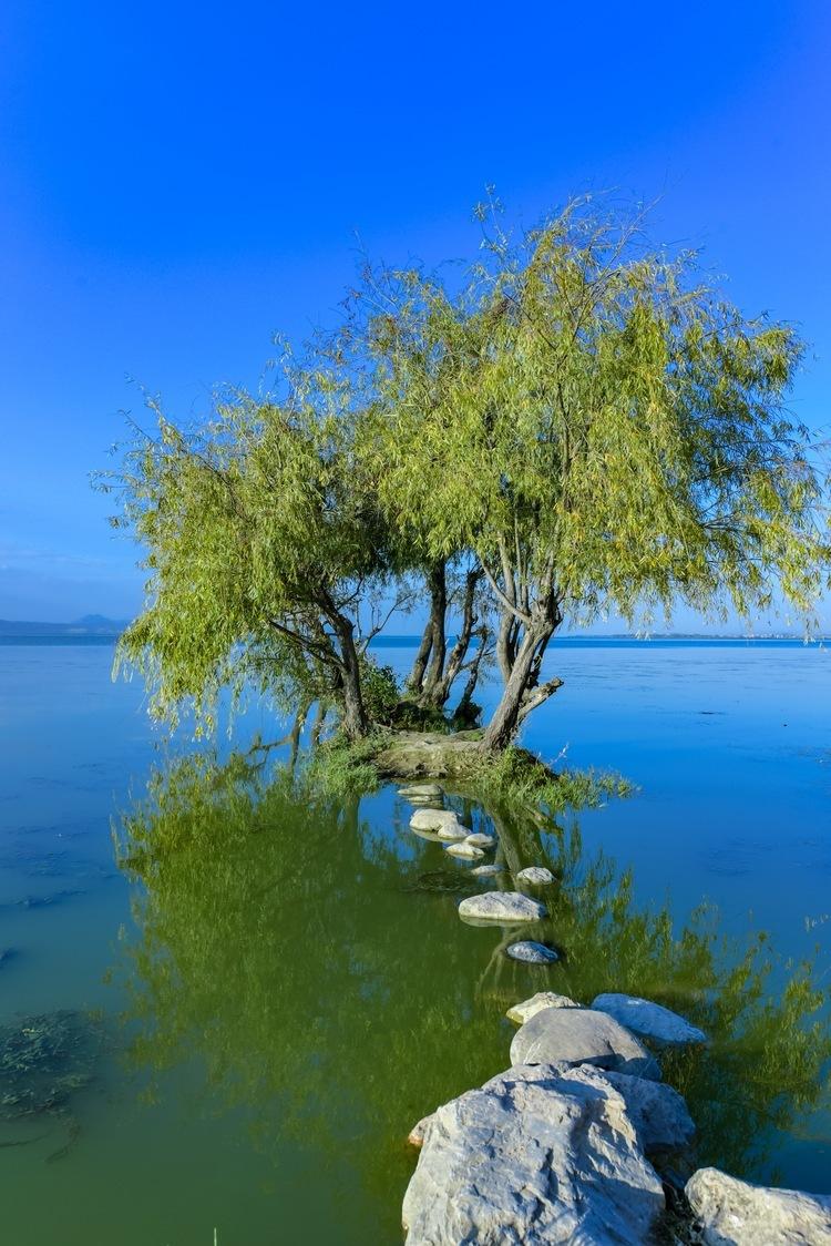 """""""哈东沿江""""被列入国际重要湿地名录"""