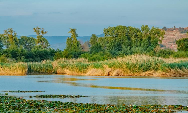 昆明湿地面积62403公顷 湿地保护率69.53%