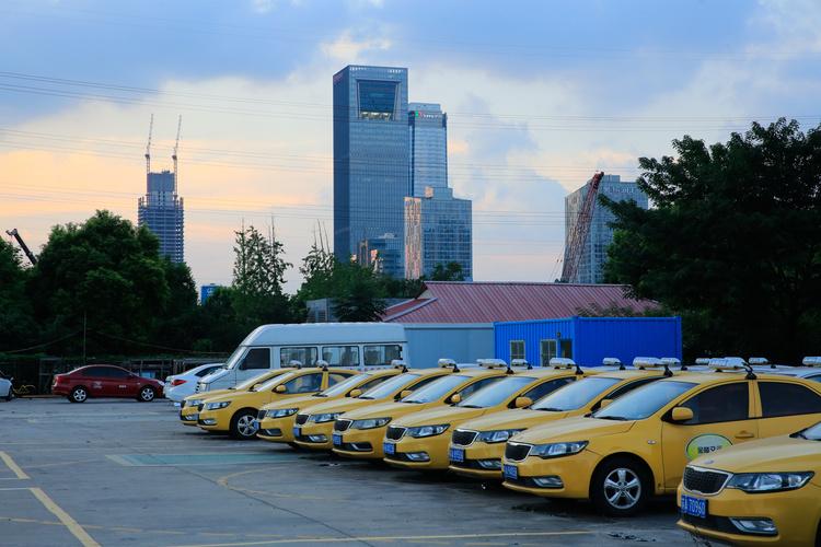 浙江正式开启自贸试验区2.0版建设 借进博会广邀贸易商