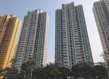 开局2021丨租赁篇:市场迎政策红利,核心城市供需两旺