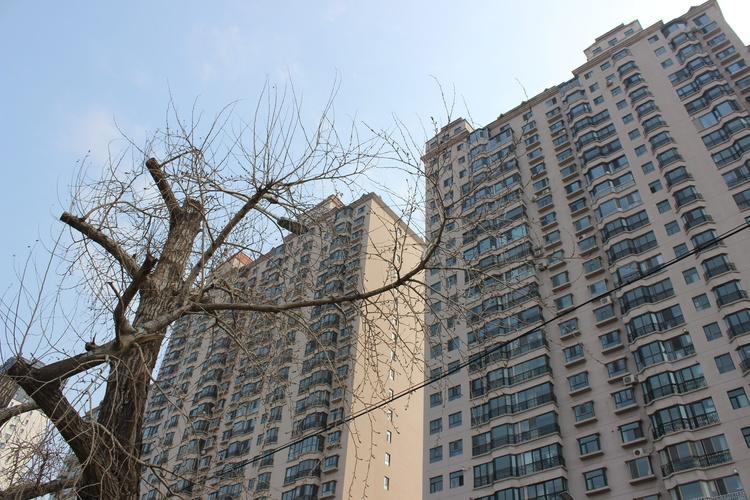 中国奥园1-9月合同销售985亿元 同比增长18%