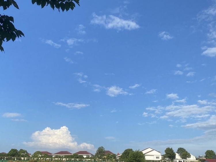 降降降 哈尔滨未来三天最低气温跌到个位数