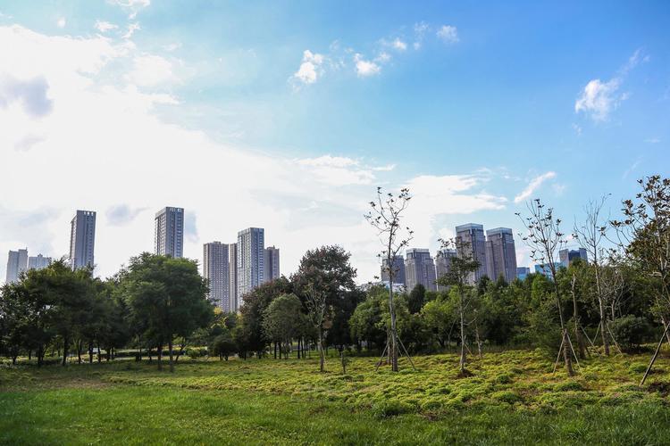 今年北京将增绿16万亩 百姓享受更多绿色福祉