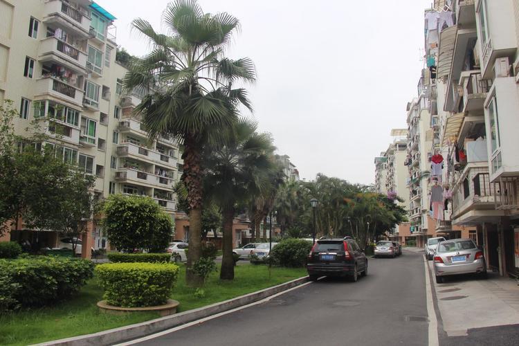 哈尔滨市重点整治师大附小、师大夜市周边街路,打通微循环