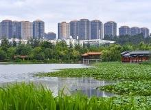 北京公园五一假期首日待客114万人次!这三家最火
