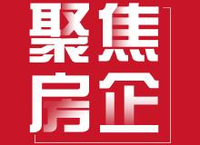 2020年1月中国房地产企业新增货值TOP100排行榜