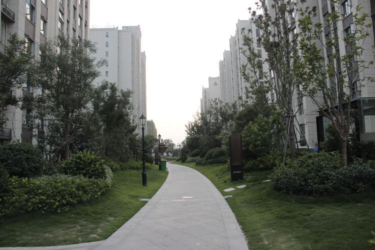 黑龙江新增40+50!绥化市望奎县惠七镇调整为高风险地区