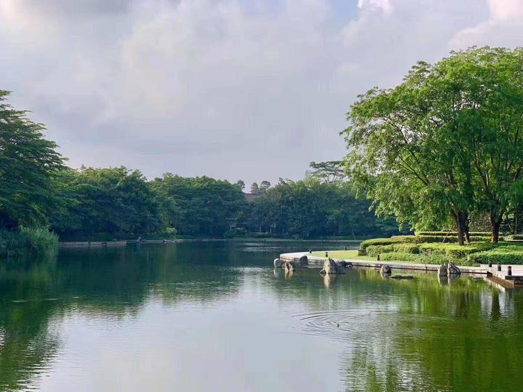 洗马河开始注入清水 换一次水约需7000元