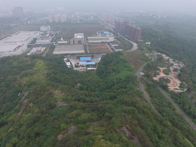 注意!哈尔滨市发布森林草原火险黄色预警信号