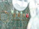 中南·春风里户型