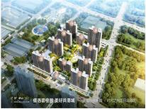 碧桂园新城·时代之光