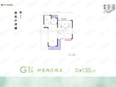 保利·春湖国际生态城4室2厅2卫户型图