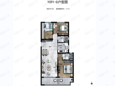 碧桂园天玺湾3室2厅2卫户型图
