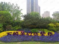 郑地美景紫华城