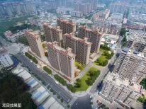 碧桂园理想城