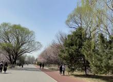奥森公园附近买两居次新房,怎么选?| 京津冀买房问答