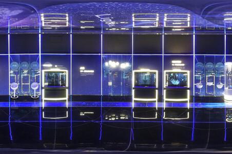北京将超前布局6G未来网络 建设全球数字经济标杆城市