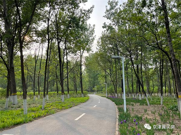 共青滨河森林公园