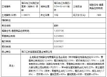 海口江东新区1宗安置房地块成功出让 成交价为7488万元