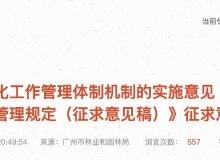 广州拟出树木管理新政!大树不能随便砍了