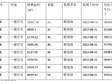 拿证速递|仁恒江湾时代首领299套房源销许,均价47869元/㎡