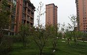 [安徽]安建锦绣花园·桃花园