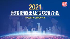 回顾:2021张槎街道土地推介会