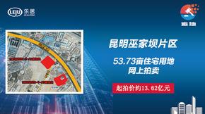 图文直播|巫家坝53.73亩住宅用地网拍
