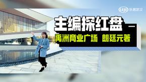 主编探红盘-禹州商业广场 朗廷元著