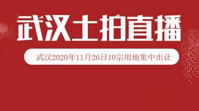 土拍预告 11月26日武汉10宗地出让